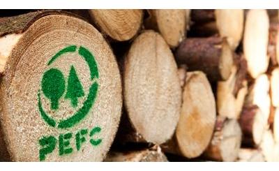 Những điều cơ bản về chứng nhận PEFC - CoC